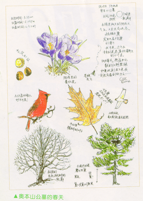 如何创作描绘春天的自然笔记